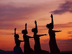 ハワイアン・フラダンスショーイメージ